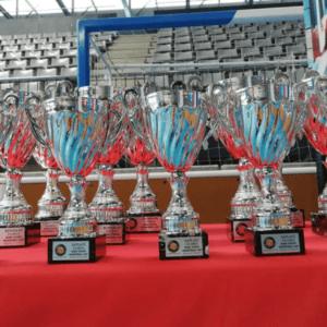 trophies 1 (1920 x 1275)